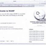 Installing MySQL