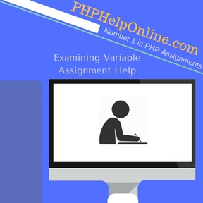 Examining Variable Assignment Help